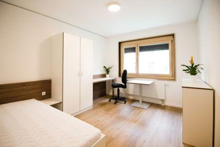 1-Zimmer-Apartment (1).jpg